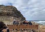 Private Cape Peninsula Tour, With Close Range Penguin Encounter From Cape Town.
