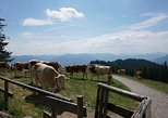 Munich Mountains: Easy Hike and Rural Bavaria