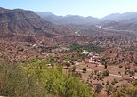 Spend one day with the locals in a berber village