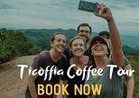 Ticoffia Blue zone Coffee Tour