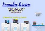 Laundry Service - Servicio de Lavado y Secado - Nicole