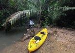 World Famous Canal Adventure at Jungle Land Panama