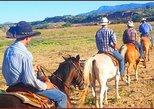 Horseback Ride 1 Hour