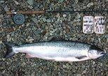 Atlantic Salmon & Sea Trout fishing.Connemara.English/French speaking Ghillie