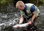 Atlantic Salmon & Sea Trout fishing.Erriff River,Galway French speaking Ghillie.