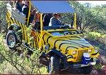 African Ambush Jeep, Horseback & Lunch
