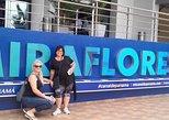 2-Hour Visit Miraflores Locks
