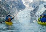 Aialik Northwestern Fjords Explorer Glacier Kayaking and Wildlife Viewing