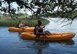 Virginia Beach 1 Hour Single Kayak Rentals