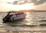 Custom - Private Boat Tour