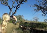 Small-Group Tour: Morning Hike at Daan Viljoen Reserve from Windhoek