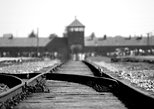 [Hotel Pick Up] Auschwitz-Birkenau Museum Guided Tour From Krakow by Minivan