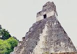 Tikal day tour with one way air tiket from Flores to Guatemala