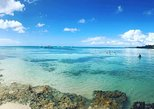 Saona Island Day Trip From Punta Cana - Special Offers