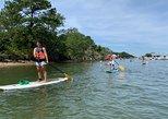2 Hour Virginia Beach Paddleboard Rentals
