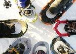 Easy Snowshoe Trek by Gondola
