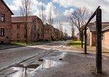 2 in 1 . Auschwitz-Birkenau & Salt Mine in one day