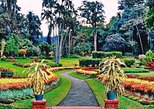 Kandy city tour for couple price