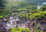 Hiking Volcano and Wildlife Tour