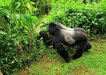 10 Days Tides Uganda Safari