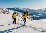 Small-group Snowshoeing Tour from Tromso