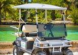 Avis Golf Cart Rental LTD ( Island explore )