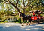 Beaufort's #1 Horse & Carriage History Tour!