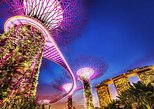 Garden by the Bay Night Out (Shared transfer)
