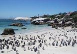 PRIVATE TOUR,Cape Point Peninsula,Kirstenbosch,Boulders Beach Penguins–Full Day