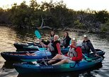 Mangrove Tunnel/Sunset Bioluminescent Comb Jelly Kayak Tour with Cocoa Kayaking!