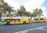 Câmara de Lobos Hop-On Hop-Off Bus and Cabo Girão Tour from Funchal