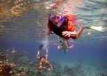 Playa del Carmen Local Snorkel Trip