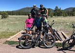 USA - Arizona: Flagstaff E Bike Tours Earn Your Beer or Coffee Tour