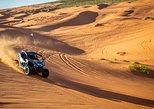 3 Hour Sand Dune Tour