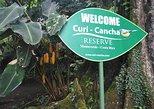 Regular Guided Tour at Curi Cancha Reserve