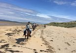 Mullaghmore beach ride. Moneygold, Co Sligo. Guided. 4 hours.
