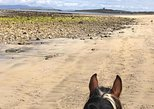 Beach horse ride. Moneygold, Co Sligo. Guided. 1, 2 or 3 hour options.