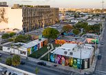 Official Street Art Walking Tour of The Wynwood Walls