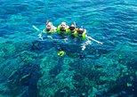 Reef Snorkel & Sail Adventure - Afternoon