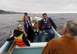 Zapallar Sport Fishing And Valparaiso City Tour From Santiago