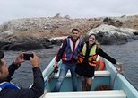 Zapallar Sport Fishing And Valparaiso City Tour From Valparaiso