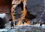 Full-Day Guided Hike in Zion National Park