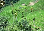 Trekking to Heeloya village - Experiencing the traditional village lifestyle