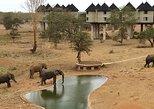 3 Days 2 Nights Tsavo East Taita Hills Game Sanctuary on Stilts