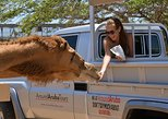 Aruba Outback Safari Tour - Best Off-Road Safari Experience