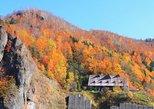 Autumn Hoheikyo, Red Leaves Gondola and Exploring Otaru Tour