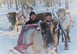 Apukka Reindeer Journey