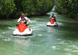 1.5 Hour (20 miles) Waverunner Tour. See Mangrove Tunnels, 20 Islands & SandBar
