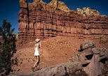 Full-Day Ghost Ranch, O'Keeffe, Hot Springs -- Includes Lunch