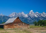 (Private) Full Day Grand Teton Wildlife Safari